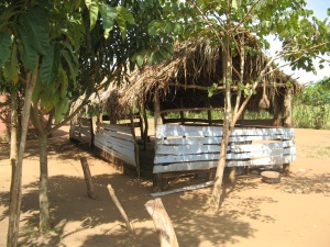 2008 The first classroom had a thatched roof and open sides. The school bell was a bit from an old vehicle and hung from the tree.