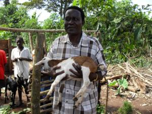 11 - Mr James with one of the young goats that will earn money for the school.