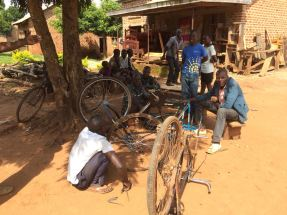 A bicycle workshop and carpenter all trying to work under the shade of a big mango tree
