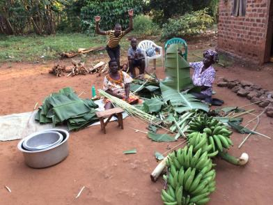 The stripping of the banana fronds is well underway!The stripping of the banana fronds is well underway!